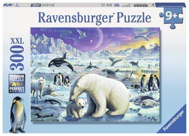 Pussel 300 bitar Arktiska djur 1