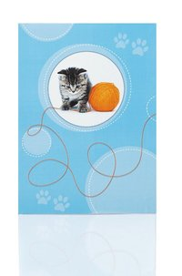 Brevpapper 10/10 katt