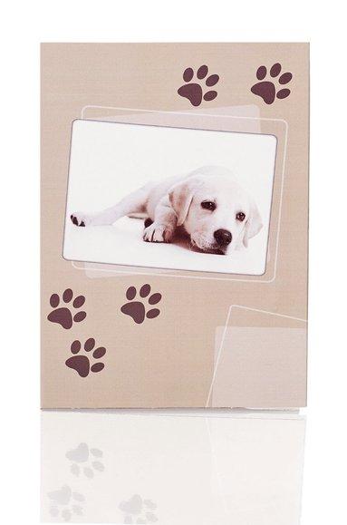 Brevpapper 10/10 hund 1