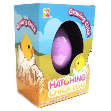 Hatching Chick Eggs