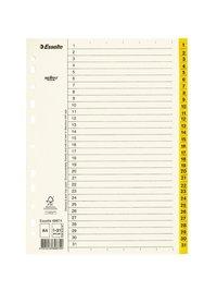 Register A4 1-31 servo