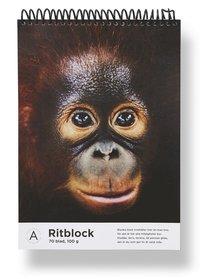 Ritblock A4 Mattias A. Klum orangutang