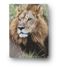 Anteckningsbok A6 linjerad mjuk pärm Mattias A. Klum lejon