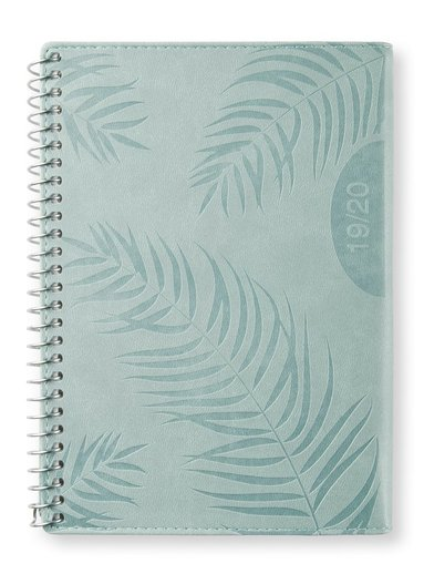 Kalender 2019-2020 midi DpS Palm green