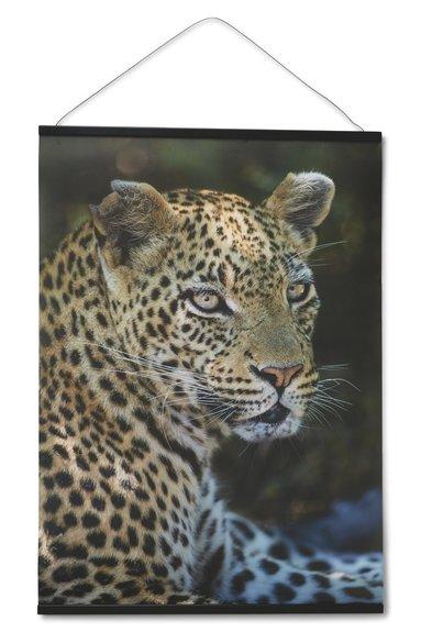 Print 70x50 Mattias A. Klum leopard