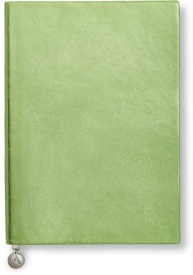 Anteckningsbok A5 olinjerad mjuk metallicgrön 1