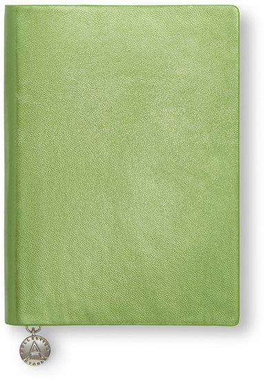 Anteckningsbok A6 linjerad mjuk metallicgrön   1