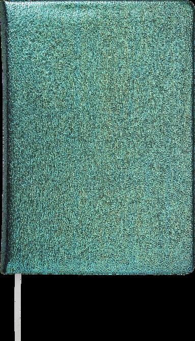 Anteckningsbok A5 Karisma grön 1