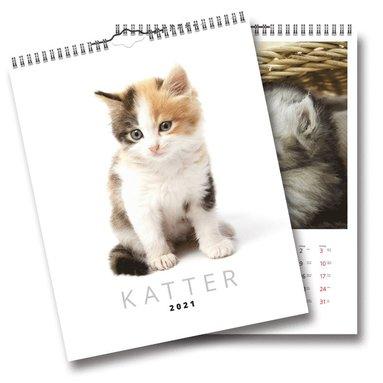 Väggkalender 2021 Katter 1