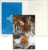 Kortfodral Plånka tiger