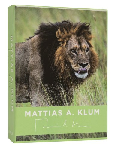 Kortlek Mattias A. Klum lejon 1