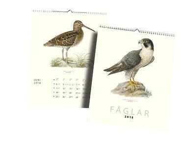 Väggkalender 2018 Fåglar 1