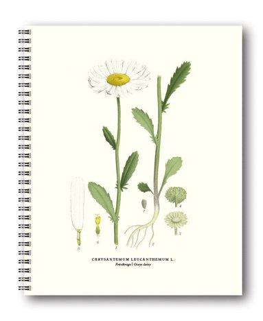 Spiralblock 21x26cm Växter Prästkrage