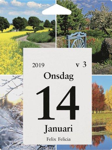 Väggblad 2019 Dagblock Årstiderna