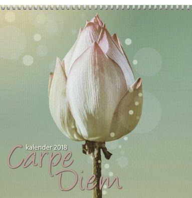 Väggkalender 2018 Carpe Diem 1
