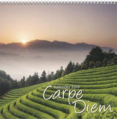 Väggkalender 2019 Carpe Diem 1