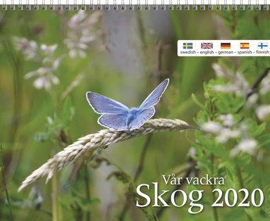 Väggkalender 2020 Vår vackra skog 1