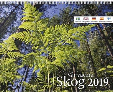 Väggkalender 2019 Vår vackra skog 1