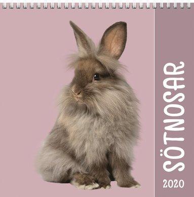 Väggkalender 2020 Sötnosar liten 1