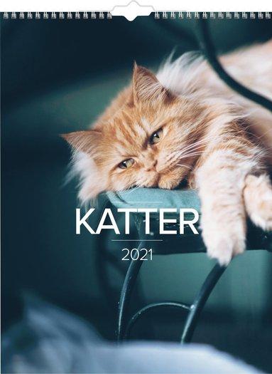 Väggkalender 2021 Stora Kattkalendern 1
