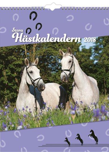 Väggkalender 2018 Stora Hästkalendern 1