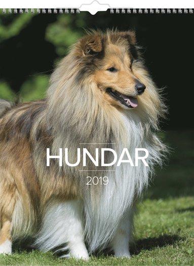 Väggkalender 2019 Stora Hundkalendern 1