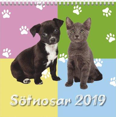 Väggkalender 2019 Sötnosar stor 1