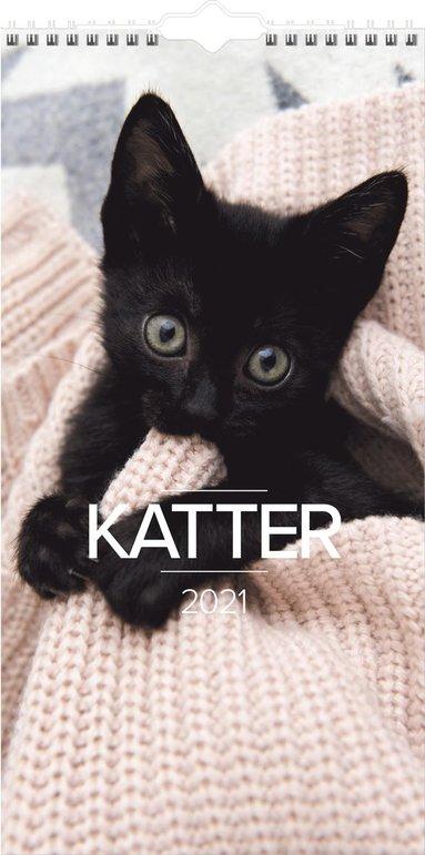 Väggkalender 2021 Lilla Kattkalendern 1