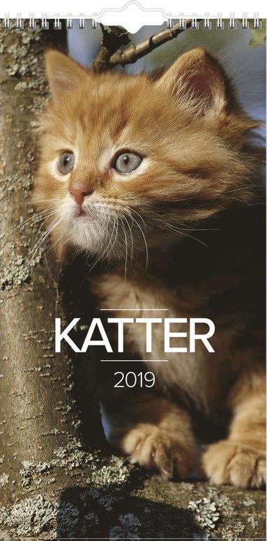 Väggkalender 2019 Liten Kattkalender 1