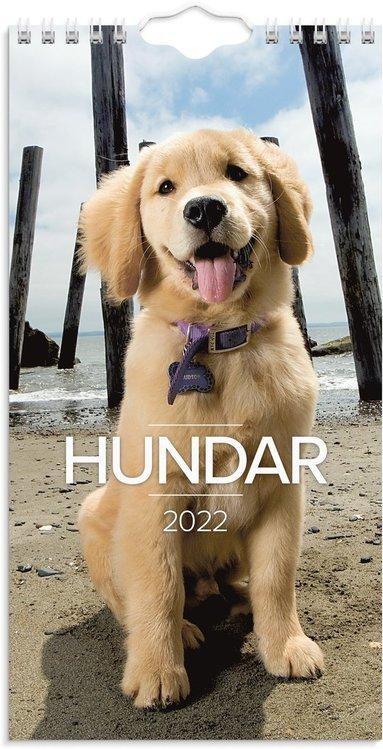 Väggkalender 2022 Lilla Hundkalendern