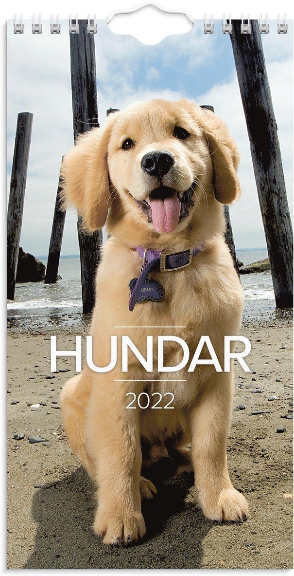 Väggkalender 2022 Lilla Hundkalendern 1