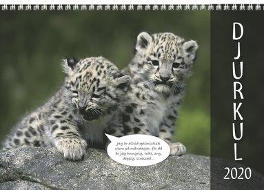 Väggkalender 2020 Djurkul 1