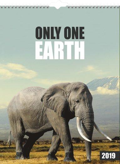 Väggkalender 2019 Only one earth 1