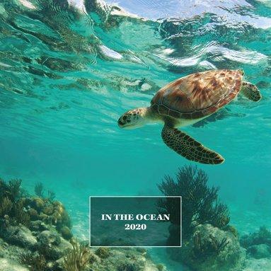 Väggkalender 2020 30x30cm Ocean life 1