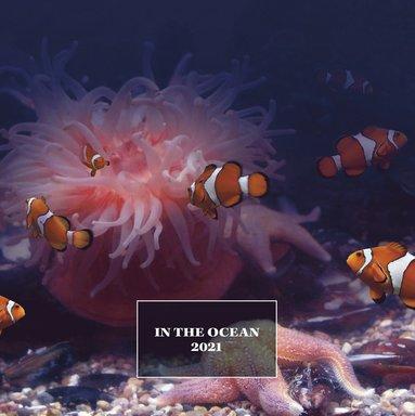 Väggkalender 2021 Ocean life 1