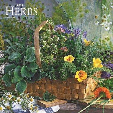 Väggkalender 2019 Herbs 1