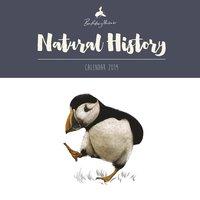 Väggkalender 2019 Natural History by Ben Rothery