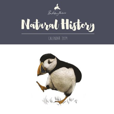 Väggkalender 2019 Natural History by Ben Rothery 1