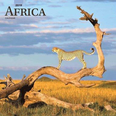 Väggkalender 2019 Africa 1
