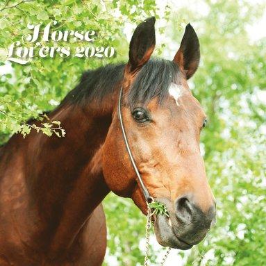 Väggkalender 2020 30x30cm Horse Lovers 1