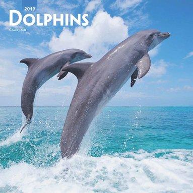 Väggkalender 2019 Dolphins 1