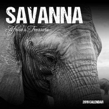 Väggkalender 2019 Savanna 1
