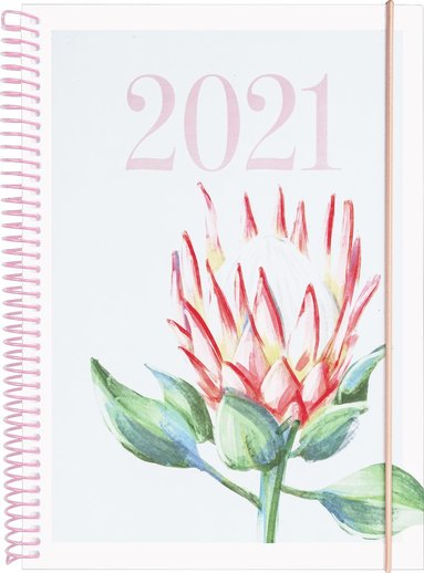 Kalender 2021 Business Legend Protea 1