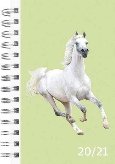 Kalender 2020-2021 Compact Pets 1