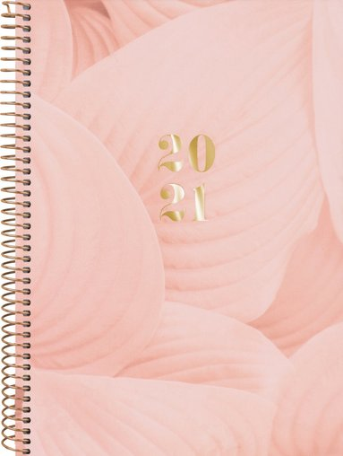 Kalender 2020-2021 Senator A6 Saga aprikos 1