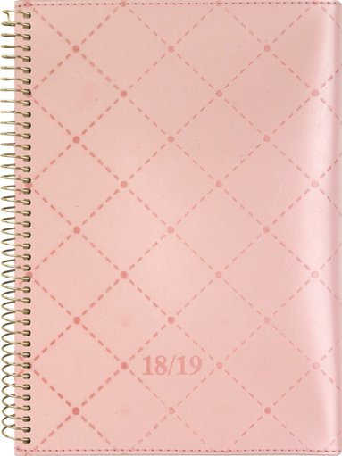 Kalender 18-19 A6 Senator Twist rosa