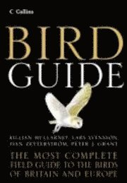 bokomslag Collins bird guide - the most complete g