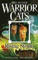 bokomslag Rising storm