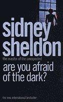 bokomslag Are You Afraid of the Dark?