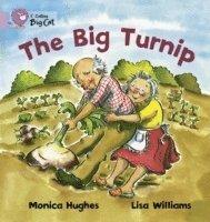 bokomslag The Big Turnip
